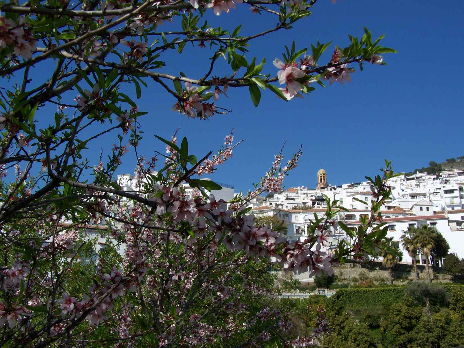 andalusie_2012_1600px_003