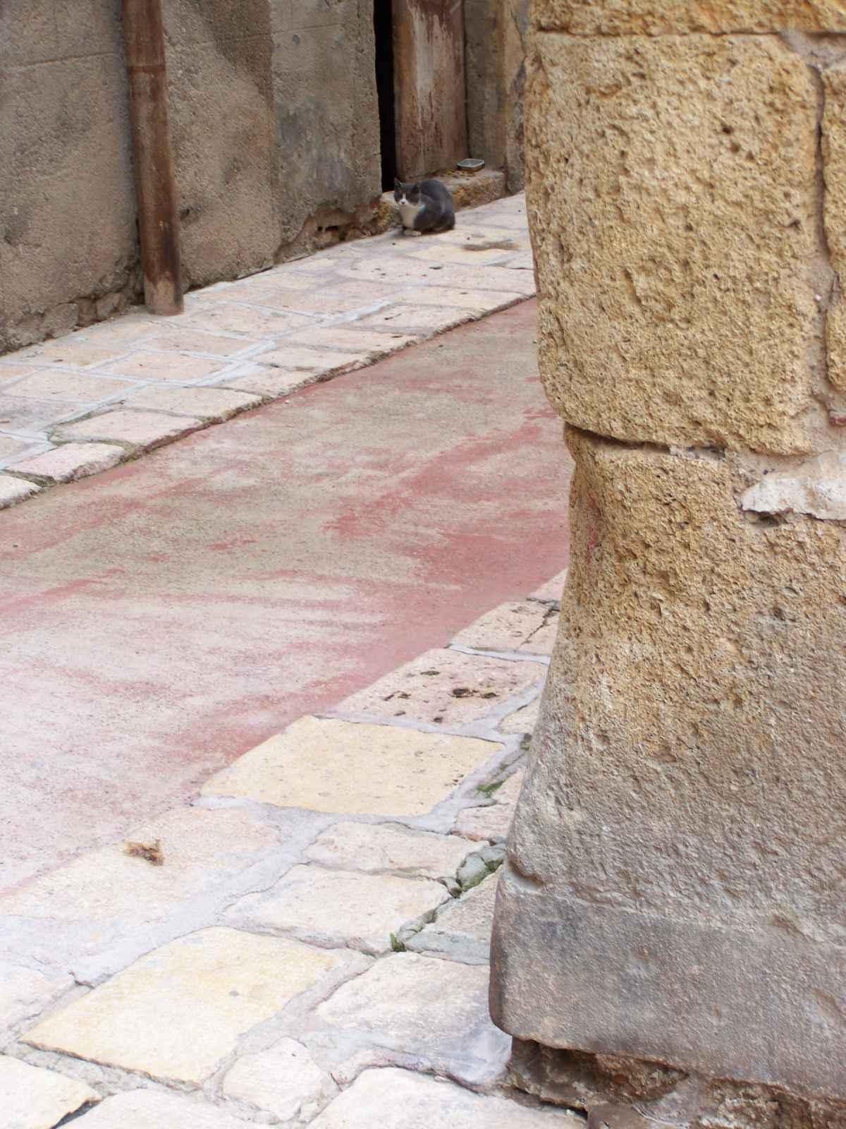 barcelona_2010_1600px_053