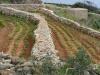 Hagar Qim en Mnajdra, Malta