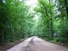 De Arnhemse Karweg, met vernieuwd fietspad