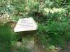 ANWB-paddestoel in het bos